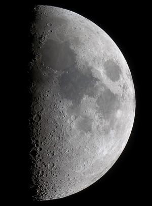 Moonlrgbhp