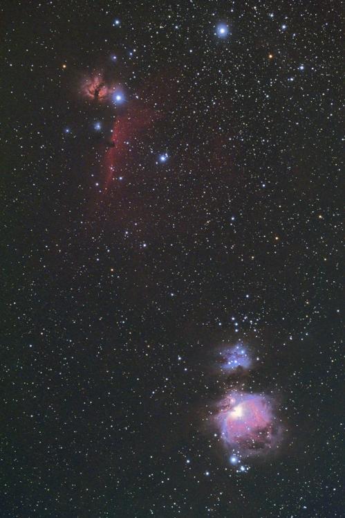 M421204